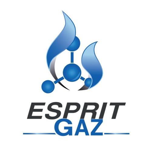 Création logo La Rochelle - Esprit Gaz by Synap TIC